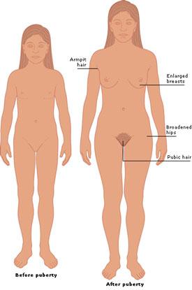 eLimu | Human Body