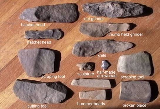 Image result for stone age tools charles darwin